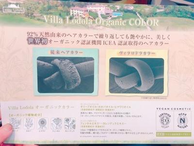 オーガニックカラー feel.a山形 石沢ブログ